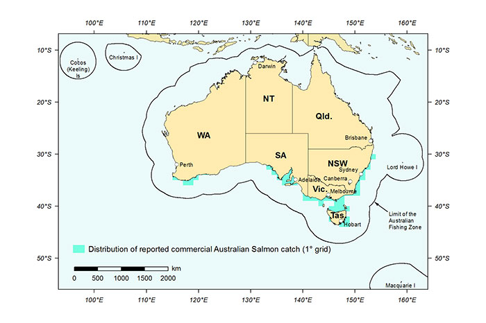 Figure 1: Distribution of reported commercial catch of Australian Salmon (both species) in Australian waters, 2013 (calendar yea