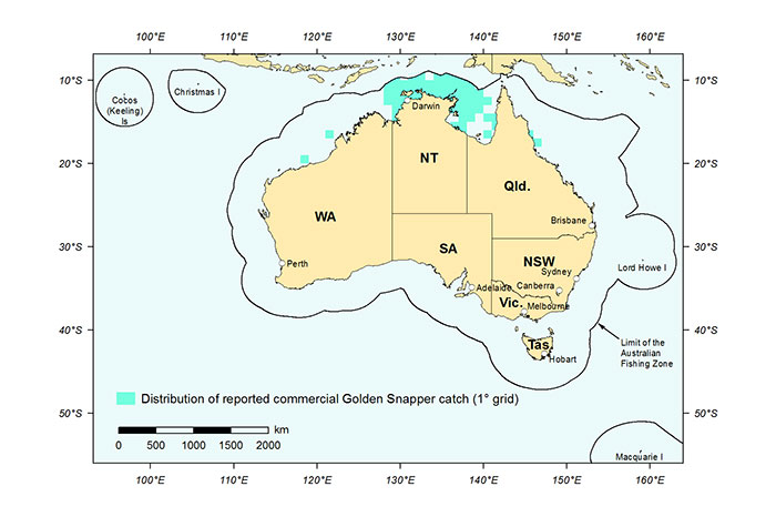 Figure 1: Distribution of reported commercial catch of Golden Snapper in Australian waters, 2013 (calendar year)