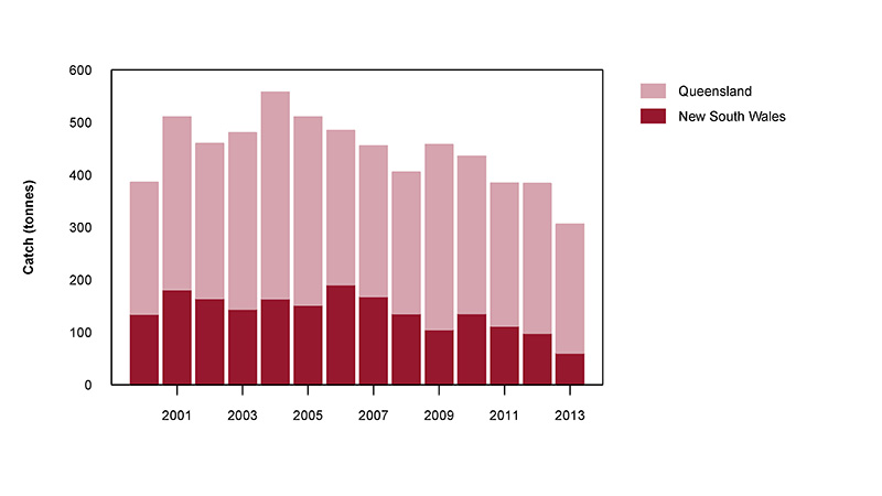 Figure 2: Commercial catch of Sand Whiting in Australian waters, 2000 to 2013 (calendar year)
